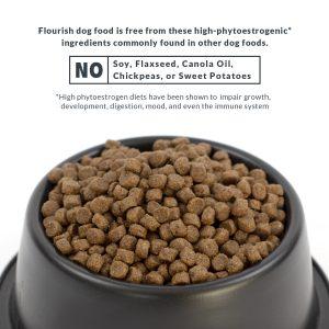 Flourish dog food kibble in dish.