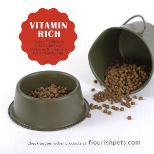 Flourish dog food in feeding dish with bucket spilling kibble.
