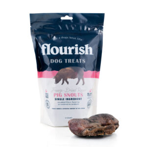 Freeze-Dried Raw Pig Snouts